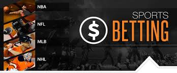 Long term profit sports betting lions bears betting preview